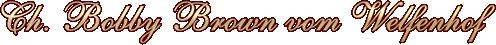 Ch. Bobby Brown vom Welfenhof